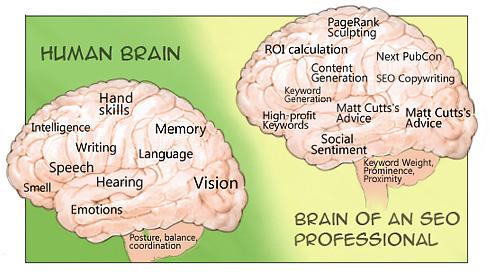 En sökmotoroptimerares hjärna